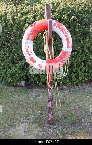 Vieux ou bouée de sauvetage accrochée à un poste en bois avec un fond d'herbe et d'une couverture verte Banque D'Images