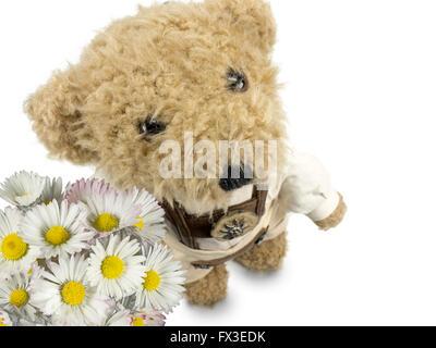 Teddy a présenté des fleurs Banque D'Images