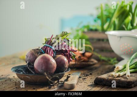 Betterave frais entier de sol de jardin, table de ferme en bois dans la cuisine. L'espace de copie pour le texte. Banque D'Images