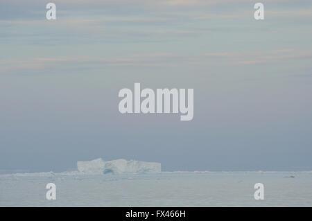Icebergs dans la mer de Weddell, près de l'île Paulet au coucher du soleil. L'île Paulet, mer de Weddell, l'Antarctique. Banque D'Images