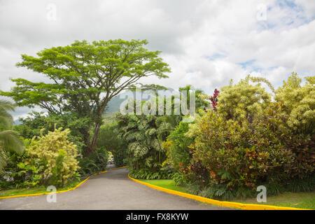 Vue sur le volcan Arenal cone de La Fortuna, Costa Rica Banque D'Images