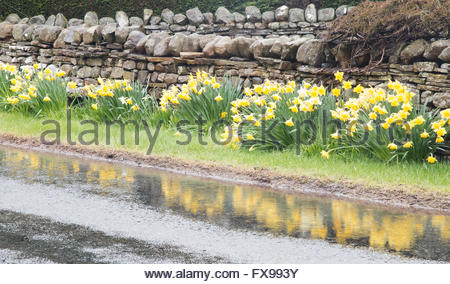 Mickleton à Middleton-in-Teesdale road, Co Durham, Royaume-Uni 12 avril 2016. Comme les fortes pluies dans la région Banque D'Images