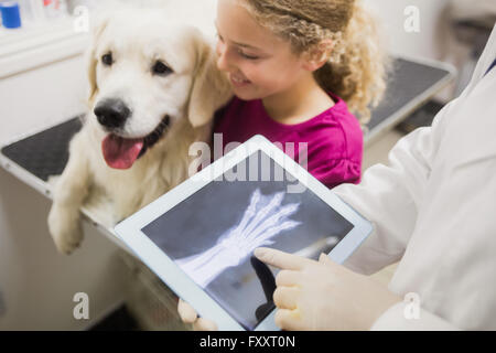 L'examen vétérinaire chiens x-ray on digital tablet Banque D'Images