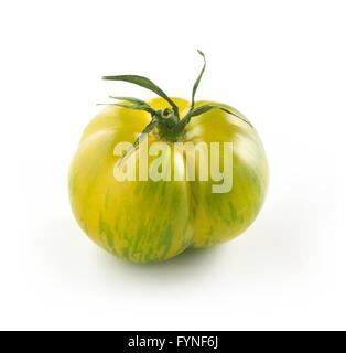 Tout unique ripe green tiger tomate sur un fond blanc dans une vue en gros plan Banque D'Images