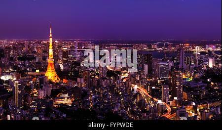 Paysage urbain, la Tour de Tokyo, la nuit, Tokyo, Japon Banque D'Images