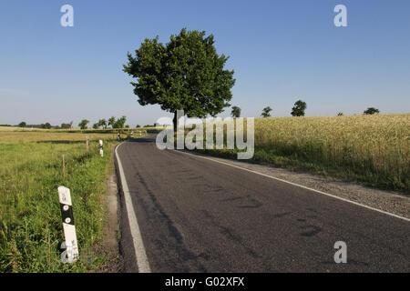 route de campagne Banque D'Images