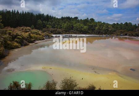 Ngakoro le lac et la piscine de Champagne à Wai-O-Tapu Thermal Wonderland à Rotorua, Nouvelle-Zélande Banque D'Images