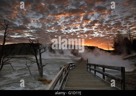 WYOMING - Lever du Soleil à partir de la promenade sur les terrasses supérieures de Mammoth Hot Springs dans le Banque D'Images
