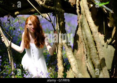 Une jeune femme élancée avec de longs cheveux rouges et en robe blanche pairs entre les arbres dans un bois avec Banque D'Images