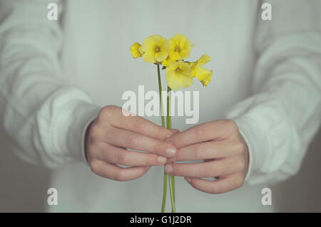 Close-up of boy holding Flowers Banque D'Images