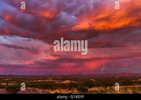 Coup de foudre dans un orage au coucher du soleil Banque D'Images