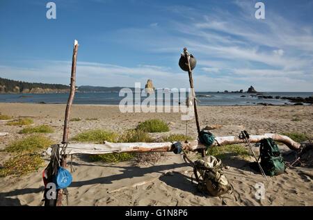 WASHINGTON - Camping à Toleak Point avec toutes les commodités d'accueil le long de la côte sauvage du Parc National Banque D'Images