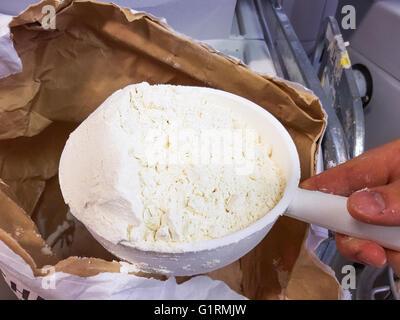 Ecope en plastique plein de farine d'épeautre blanche, dans une boulangerie Banque D'Images