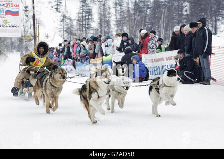 L'exécution de l'équipe de chien de traîneau Valery Chuprin musher du Kamtchatka. Course de chiens de traîneau extrême Banque D'Images