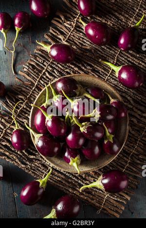 Les matières premières organiques indien Bébé Aubergines dans un bol