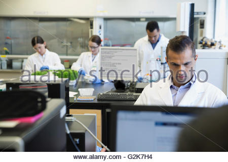 L'accent scientist working at computer in laboratory Banque D'Images