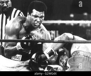 Fichier - Un fichier photo datée du 30 octobre 1974 nous montre le boxeur Muhammad Ali (L) récupérer son titre de champion du monde des poids lourds en frappant son adversaire George Foreman à Kinshasa, Zaïre. Né Cassius Clay, légende de boxe Muhammad Ali, appelé 'la plus grande, ' est mort le 03 juin 2016 à Phoenix, Arizona, USA, à l'âge de 74 ans, un porte-parole de la famille a dit. Photo: AFP