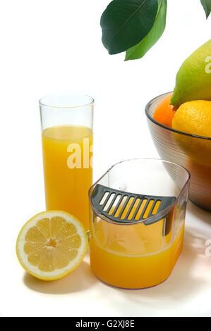 Bouilloire centrifugeuse pour presser les oranges, citrons et pamplemousses photographiés en studio sur fond blanc Banque D'Images