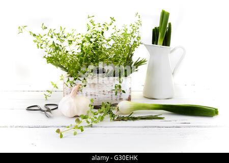 Jardin de fines herbes (romarin, thym, persil, ail, oignons de printemps) dans la boîte en bois blanc sur la table Banque D'Images