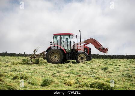 Un tracteur rouge en tournant l'herbe pour sécher dans un été hay meadow dans la campagne anglaise. Le père et le Banque D'Images