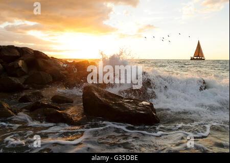 Voilier waves est un océan seascape avec une vague s'écraser contre un rocher jetant de l'eau dans l'air sous forme Banque D'Images