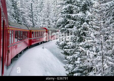 Train bernina express entouré par snowy woods filisur canton des Grisons suisse europe Banque D'Images