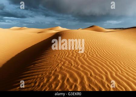 Les dunes de sable du Sahara avec orageux, ciel nuageux.