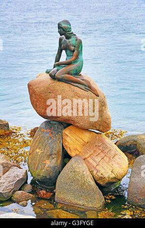 La statue de la petite sirène de Copenhague, Danemark Banque D'Images