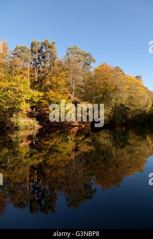 L'automne arbres se reflétant dans le lac encore, Hindhead, Hampshire, Angleterre, Royaume-Uni, Europe Banque D'Images