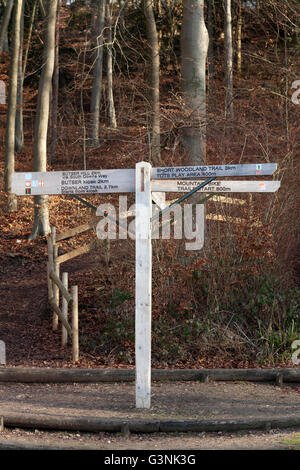 Butser Hill South Downs Way signpost, South Downs, Hampshire, Angleterre, Royaume-Uni, Europe Banque D'Images