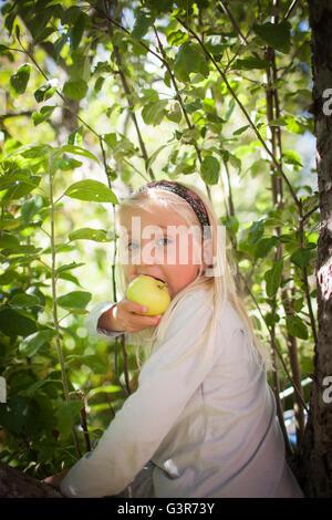La Suède, Medelpad, Portrait de jeune fille blonde (4-5) eating apple Banque D'Images
