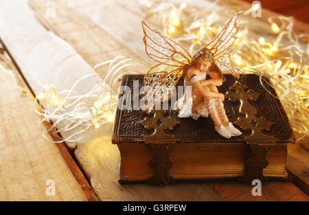 Image de petite fée magique dans la forêt à côté de vieux livre d'histoire Banque D'Images