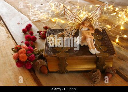 Image de petite fée magique dans la forêt à côté de vieux livre d'histoires. vintage filtered Banque D'Images