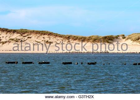 La partie sud-est de wangerooge, Frise, Basse-Saxe, Allemagne, mer du Nord Banque D'Images