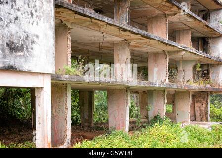 Intérieur d'un bâtiment en ruine, Cuba