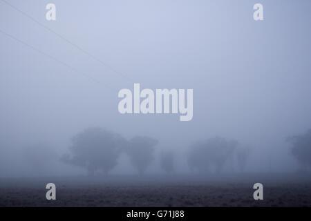 Tôt le matin, promenade dans la campagne le long de ligne de clôture dans le brouillard et le gel. La visibilité faible.