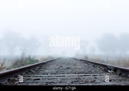 Tôt le matin, promenade dans la campagne le long des lignes de chemin de fer dans le brouillard et le gel. Faible visibilité