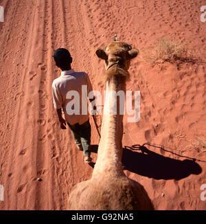 Un voyage de chameau à travers le désert de Wadi Rum, Jordanie