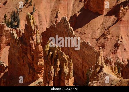 Le magnifique paysage mais souvent ignoré de Cedar Breaks National Monument (Utah). Banque D'Images