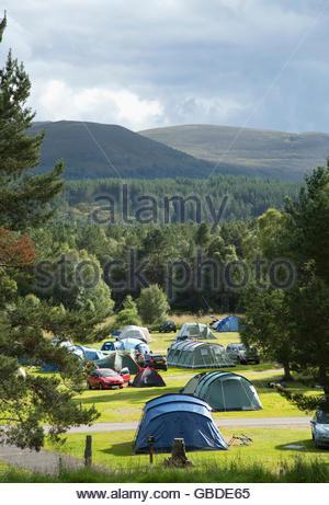 Le camping à Glenmore Forest Park près d'Aviemore, Highlands d'Ecosse. Banque D'Images