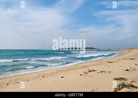 Playa de Canos de Meca, plage, kitesurfers, Cabo de Trafalgar à l'arrière, phare, Barbate, Province de Cadix, Andalousie, Costa de la Luz, Espagne, Europe