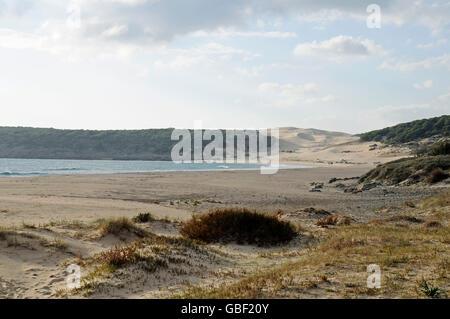 Playa de Bolonia, plage, Tarifa, Province de Cadix, Costa de la Luz, Andalousie, Espagne, Europe