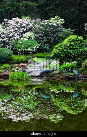 Floraison printanière reflets dans l'étang à Shore Acres State Park Botanical Garden sur la côte sud de l'Oregon. Banque D'Images