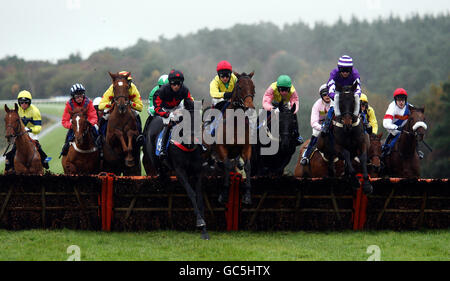 Horse Racing - Hippodrome d'Exeter