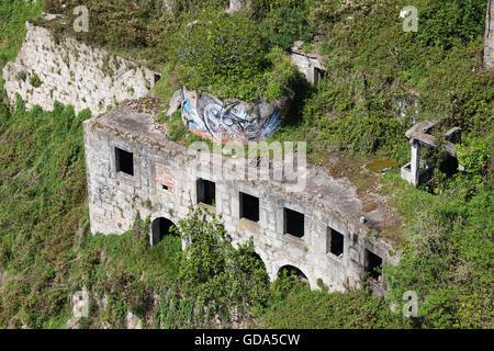 Abandonné ancien bâtiment en pierre entouré par des plantes vertes à Porto, Portugal Banque D'Images
