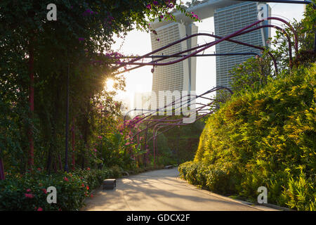 Coucher du soleil sur le parc allée au Gardens By The Bay avec Marina Bay Sands s'appuyant sur l'arrière-plan, Singapour Banque D'Images