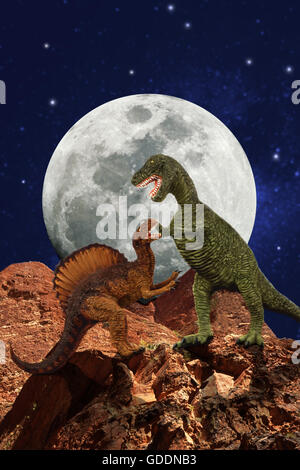 Tyrannosaure, tyrannosaurus rex et Spinosaurus, d'un grand théropode carnivore du Crétacé tardif Banque D'Images