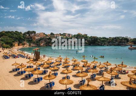 Des parasols de paille sur la plage de Porto Cristo à Majorque, Îles Baléares, Espagne Banque D'Images