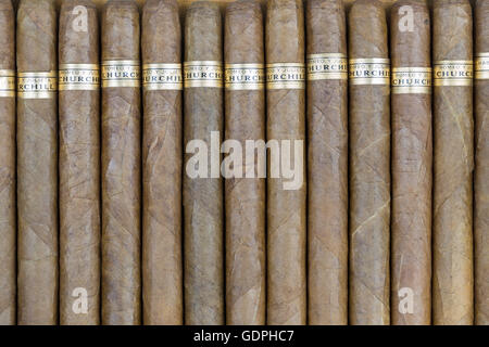 Cigares Cubains Romeo y Julieta (Roméo et Juliette) Banque D'Images