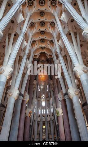 Intérieur de la basilique Sagrada Familia,nef, Barcelone, Catalogne, Espagne Banque D'Images
